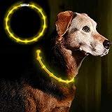 Anicoll LED Leuchthalsband Hunde Halsband Gelb USB wiederaufladbar - Längenverstellbarer Haustier...
