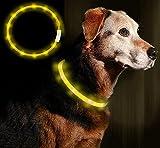 Anicoll LED Leuchthalsband Hunde Halsband USB wiederaufladbar - Längenverstellbarer Haustier...