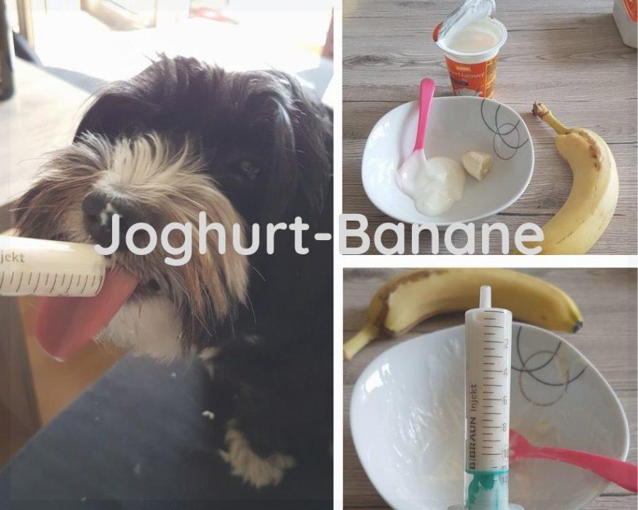 futtertuben-fuer-unterwegs-joghurt-banane