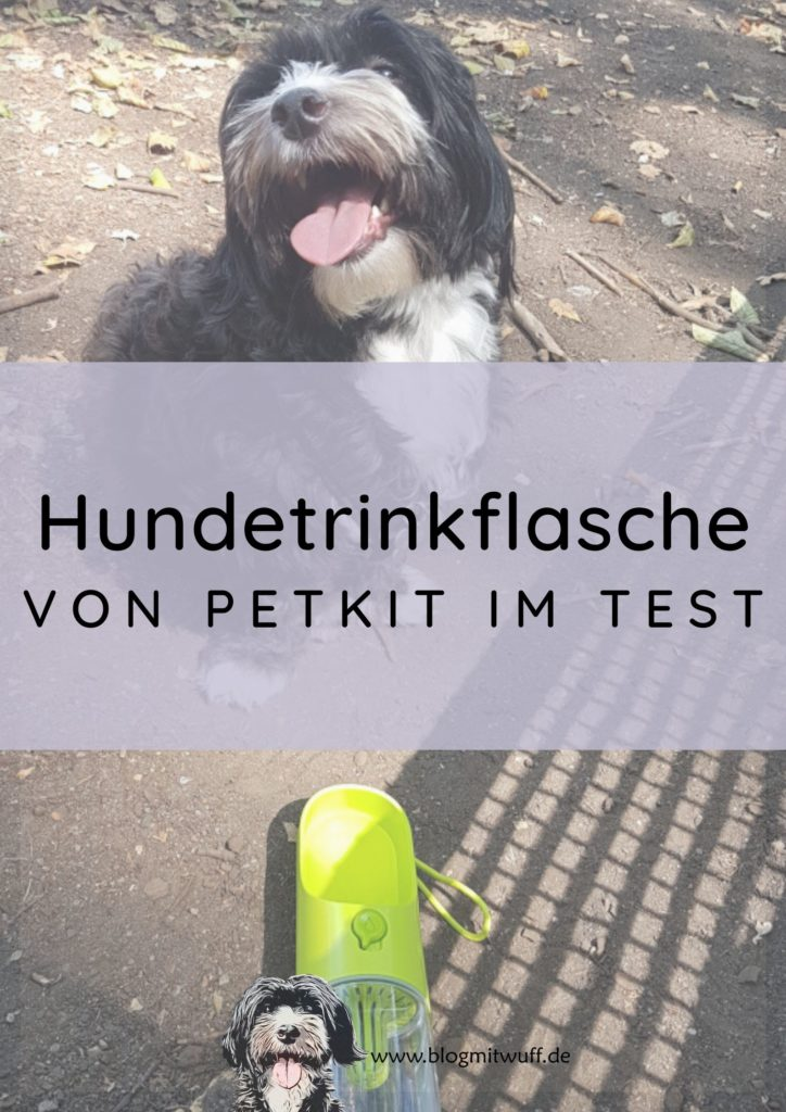 Titelbild zu Hundetrinkflasche von Petkit