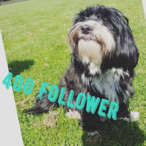 buffy_400_follower