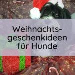 Titelbild zu Weihnachtsgeschenkideen für Hunde