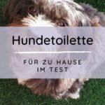 Werbung | Sailnovo Hundetoilette für zu Hause