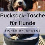 Werbung   Rucksack-Tasche für Hunde