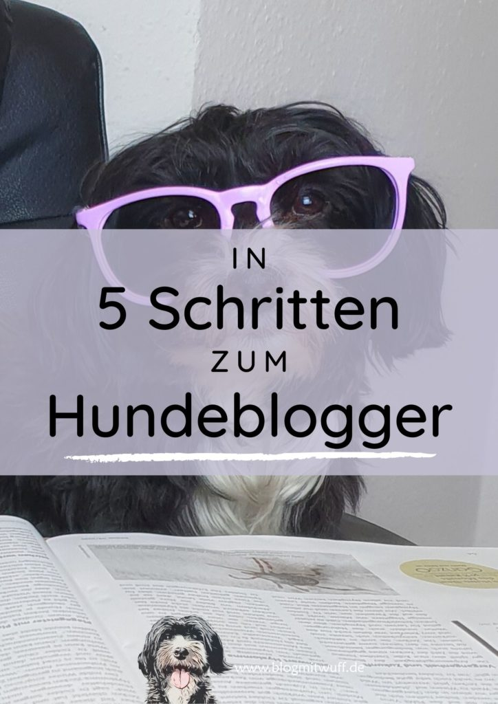 In 5 Schritten zum Hundeblogger