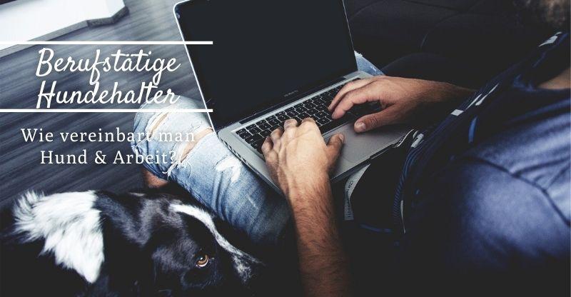 Wie vereinbart man Hund und Arbeit?