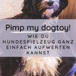 Pimp your dogtoys – Wie du Hundespielzeug ganz einfach aufwerten kannst
