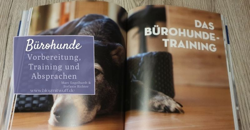 Bürohunde Buch Training