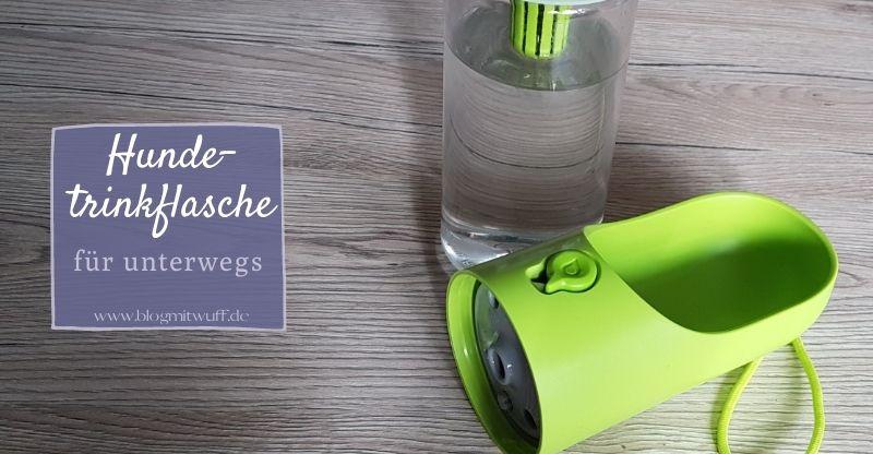 Werbung | PETKIT EVERSWEET Hundetrinkflasche für unterwegs