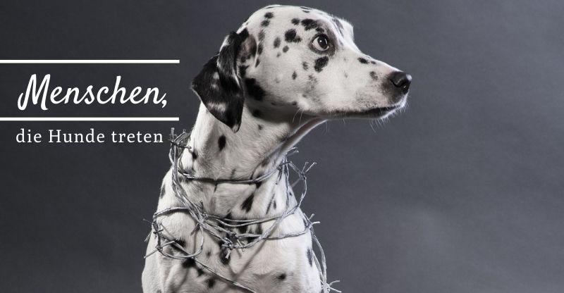 Menschen, die Hunde treten