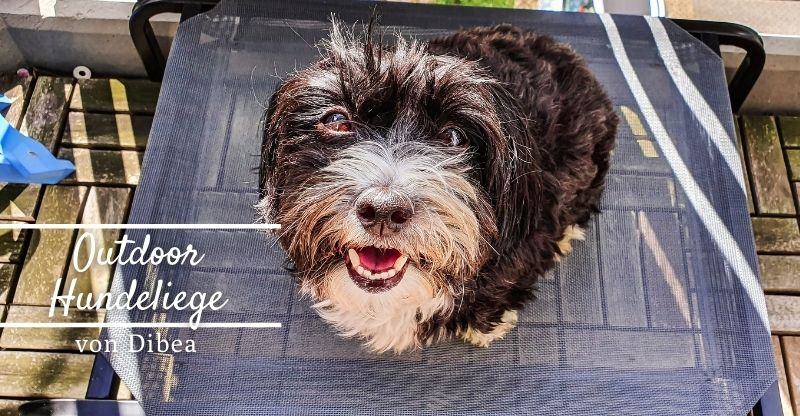 Werbung | dibea Outdoor Hundeliege