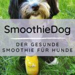 Werbung | SmoothieDog – Der gesunde Smoothie für Hunde