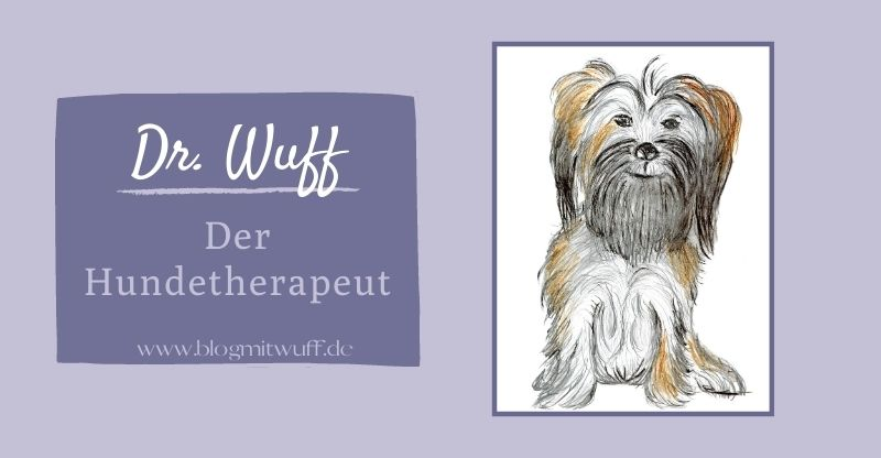 Dr. Wuff – Der Hundetherapeut