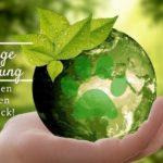 Nachhaltige Hundehaltung – Reduziere den ökologischen Pfotenabdruck!