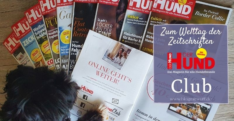 DER HUND – Magazin & Club