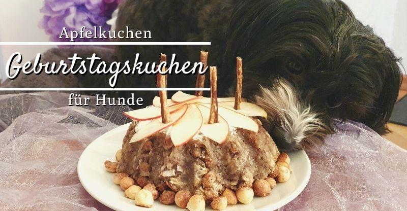 Geburtstagskuchen Apfelkuchen für Hunde