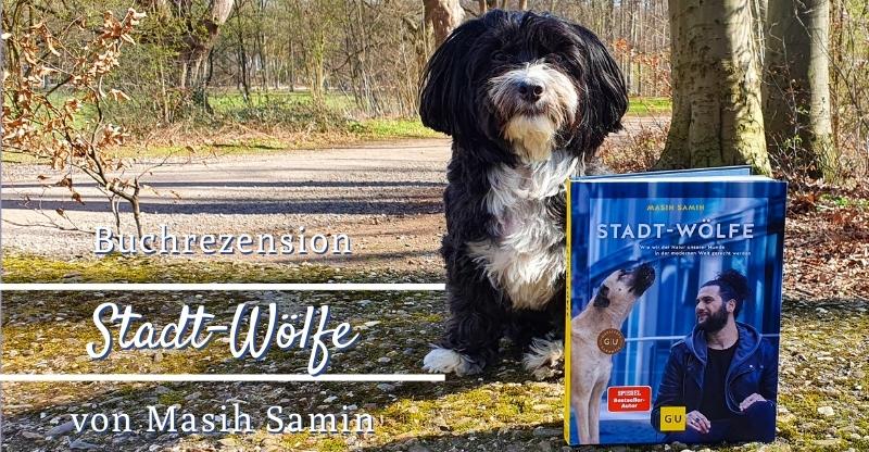 Buchrezension Stadt-Wölfe von Masih Samin