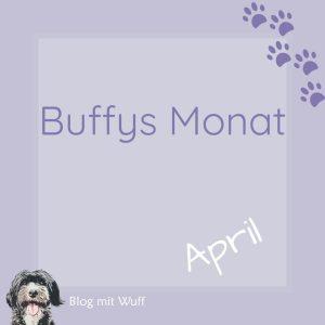 04 buffys_monat_april
