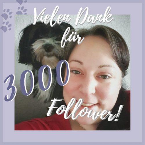 3000 Follower