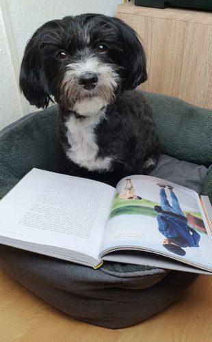 Buffy mit Buch von Masih Samin - Sei höflich zu deinem Hund 02