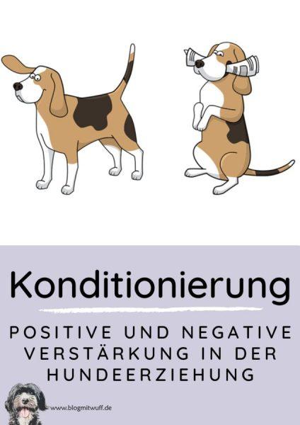 Kopie von Pin zu Positive und negative Verstärkung in der Hundeerziehung