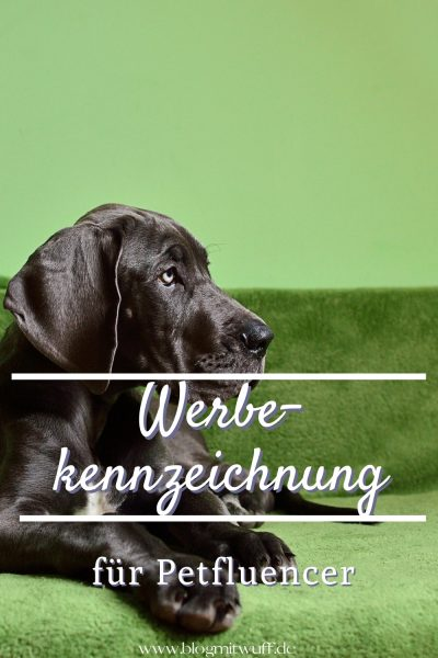 Werbekennzeichnung für Petfluencer