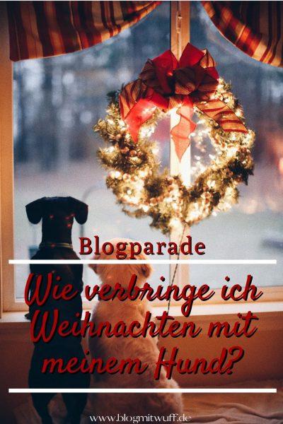 Pin Blogparade Wie verbringe ich Weihnachten mit meinem Hund