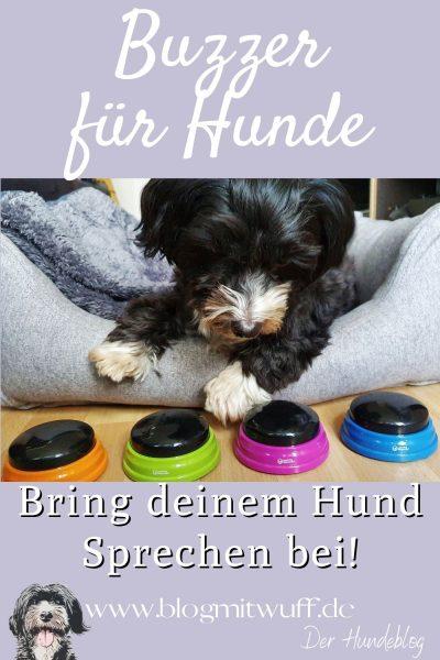 Sprachbuzzer für Hunde