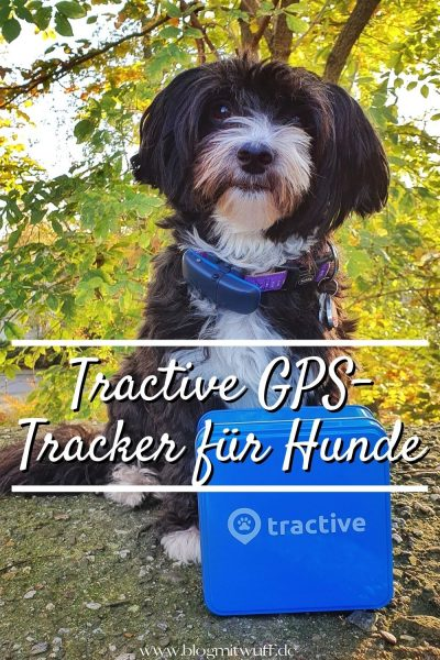 Pin Tractive GPS Tracker für Hunde