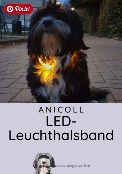 Pin it - Anicoll LED-Leuchthalsband
