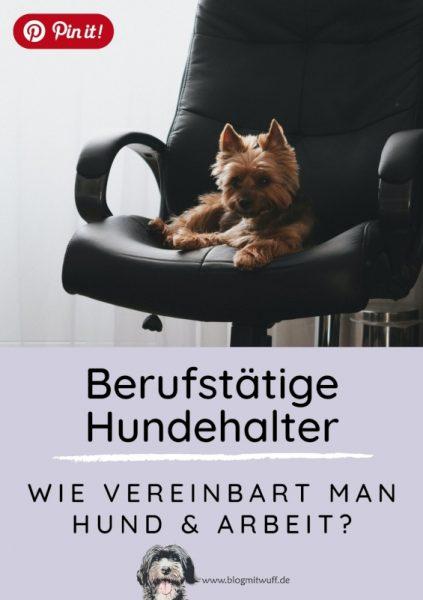 Pin it - Berufstätige Hundehalter Wie vereinbart man Hund und Arbeit