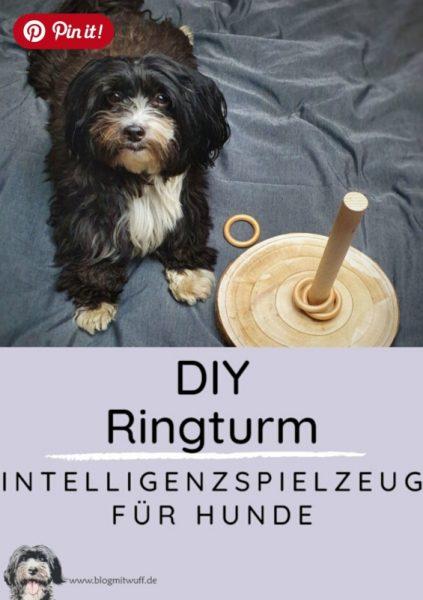 Pin it - DIY Ringturm Intelligenzspielzeug für Hunde