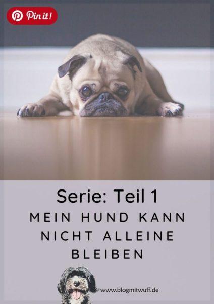 Pin it - Mein Hund kann nicht alleine bleiben Teil 1