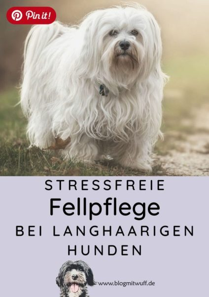Pin it - Stressfreie Fellpflege bei langhaarigen Hunden