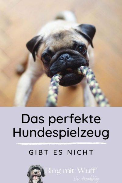 Pin zu Das perfekte Hundespielzeug gibt es nicht