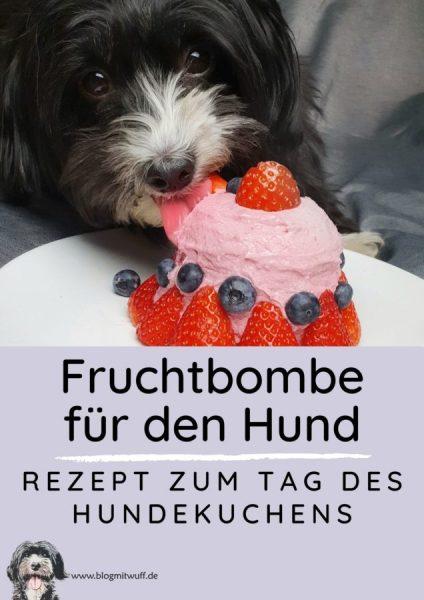 Pin zu Hundekuchen Fruchtbombe