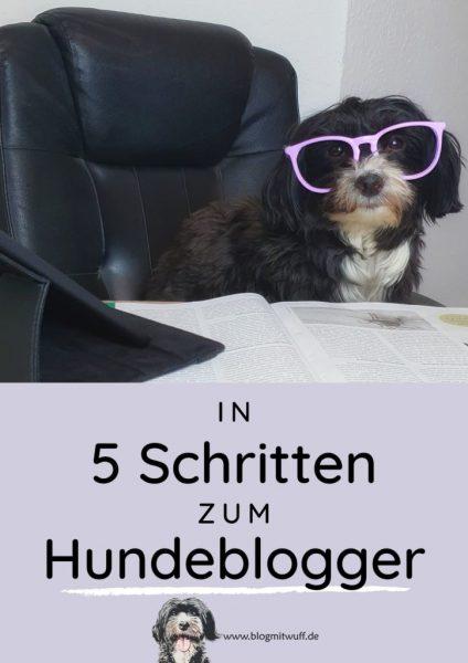 Pin zu In 5 Schritten zum Hundeblogger