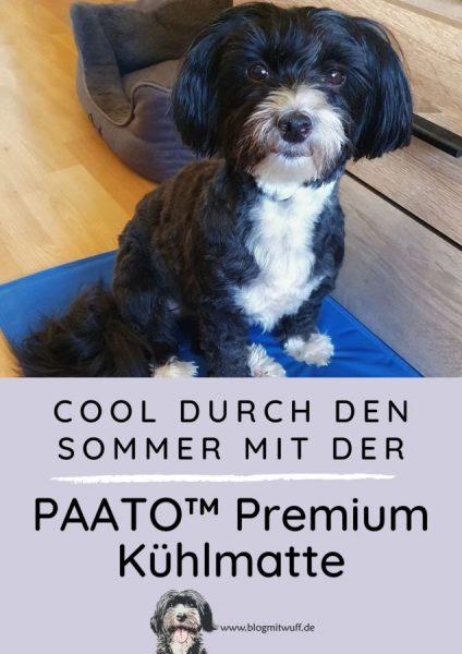Pin zu Kühlmatte für Hunde