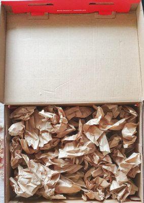 Schnüffelbox für Hunde DIY