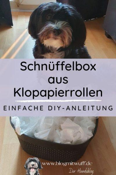 Titelbild zu DIY Schnüffelbox