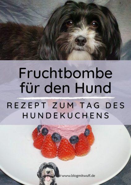 Titelbild zu Hundekuchen Fruchtbombe
