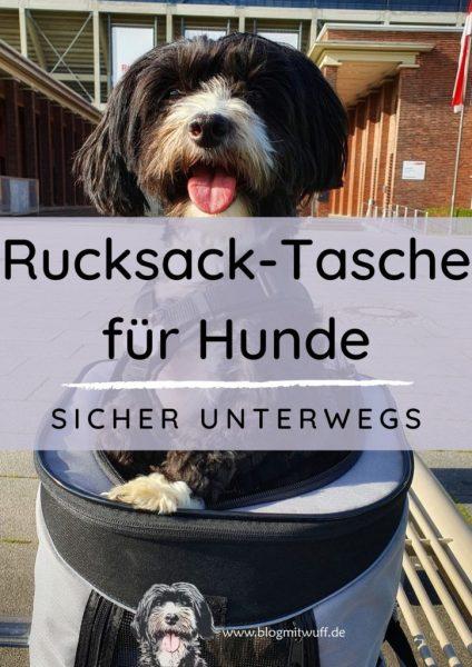 Titelbild zu Hunderucksack