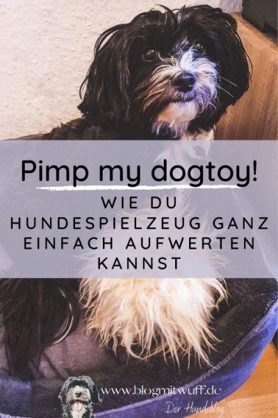 Titelbild zu Pimp my dogtoy