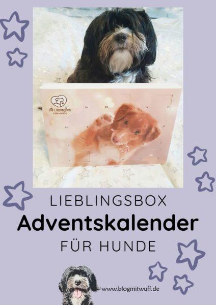 Pin zu Lieblingsbox Adventskalender für Hunde