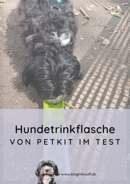 Pin zu Hundetrinkflasche von Petkit