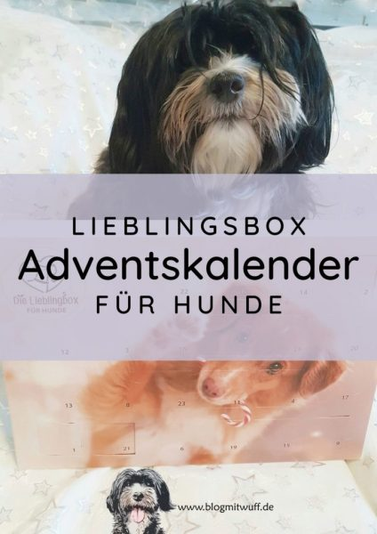Titelbild zu Lieblingsbox Adventskalender für Hunde