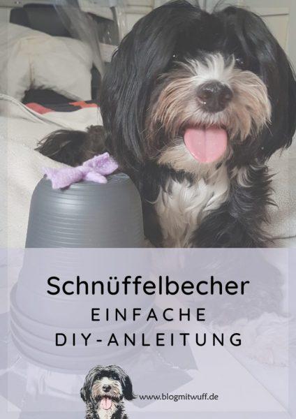 Pin zu Schnüffelbecher DIY