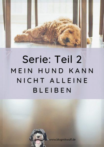 Titelbild zu Teil 2 Mein Hund kann nicht alleine bleiben