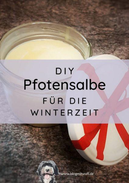 Titelbild zu DIY Pfotensalbe für die Winterzeit