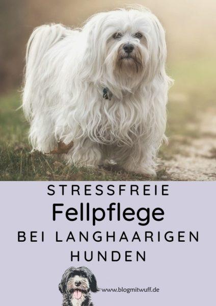 Pin zu stressfreie Fellpflege bei langhaarigen Hunden